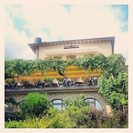 Al Terrazzo....e che terrazzo! - Picture of Ristorante Al Terrazzo ...