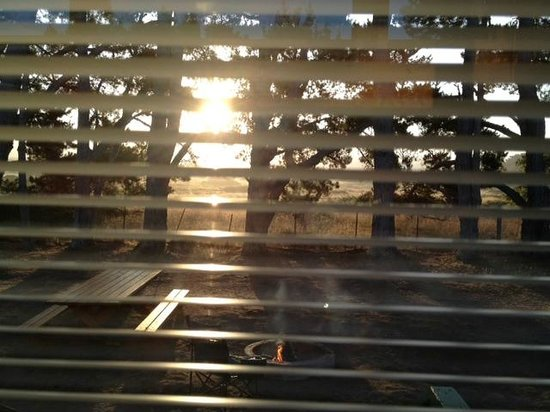 KOA Kamping Kabins : Looking out front doors in the morning
