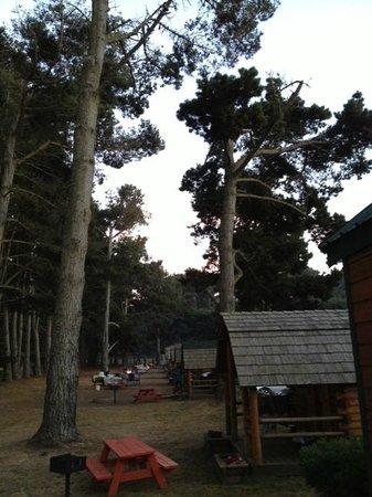 KOA Kamping Kabins : View from our Loft Lodge towards South
