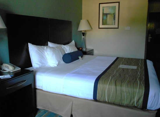 Best Western Plus Berkshire Hills Inn & Suites: Room 308