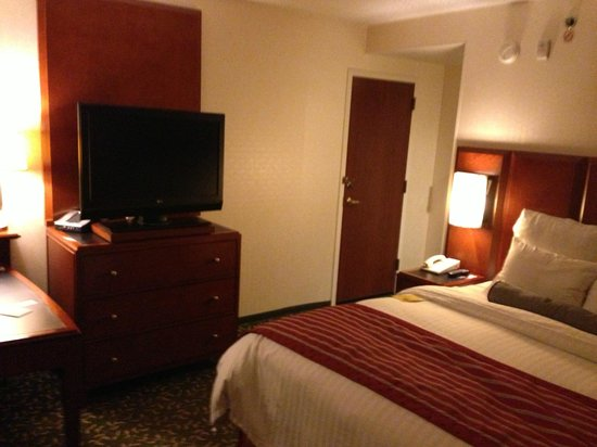 Detroit Metro Airport Marriott: View of the room