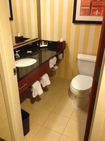 Detroit Metro Airport Marriott: Clean bathroom