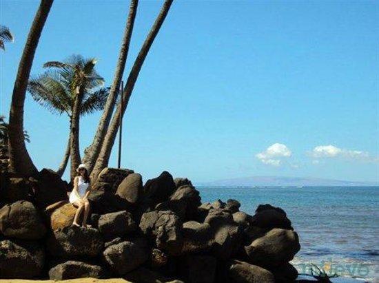 Maui Sugar Beach Inn: Uma das praias