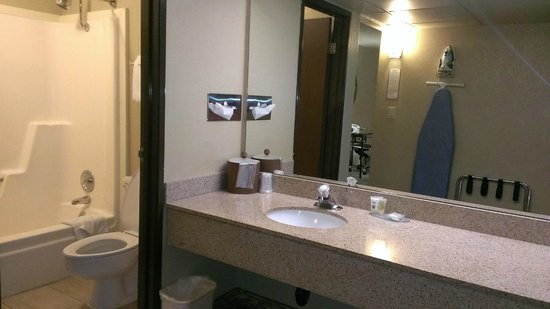 Dobson Ranch Inn and Suites: Bathroom