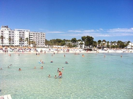 Alcudia Beach Hotel Reviews