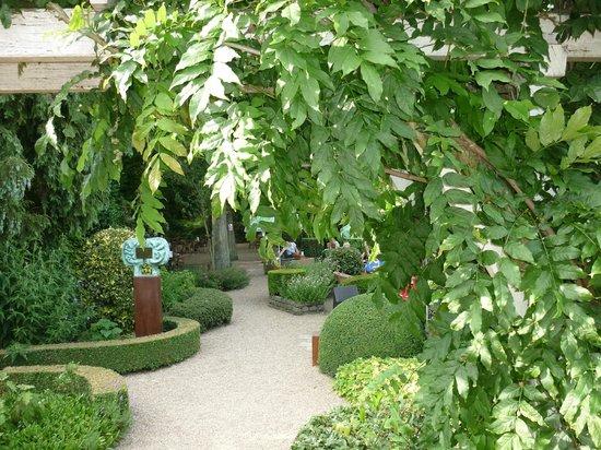 De Hoofdige Boer : Prachtige tuin om iets te drinken, lezen en...