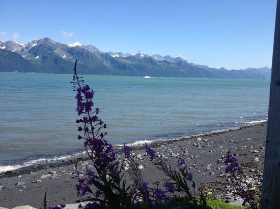 Angels Rest on Resurrection Bay, LLC: View from the deck of Cloud 9 cabin
