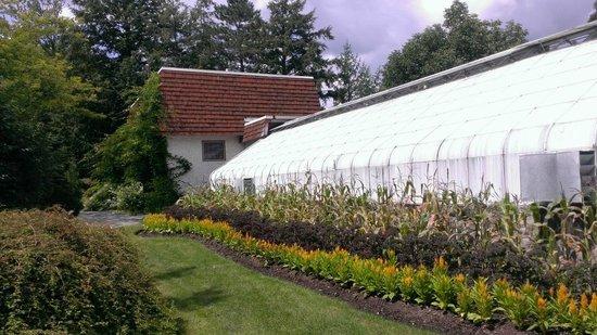 Domaine-Howard Park : Garden area