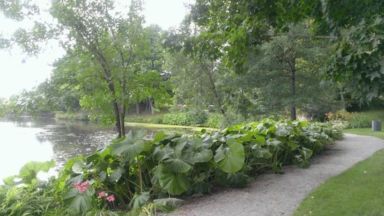 Domaine-Howard Park : Walking path along pond