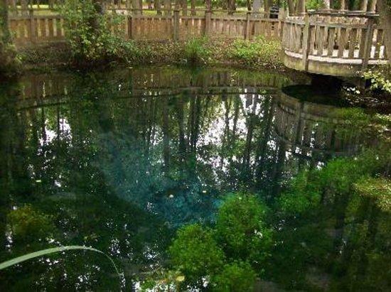 Entrez au citadville foto di au jardin des deux ponts for Au jardin des deux ponts abbeville