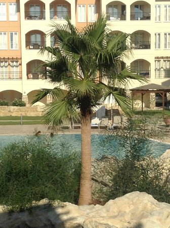 St. Nicolas Elegant Residence: the pool area