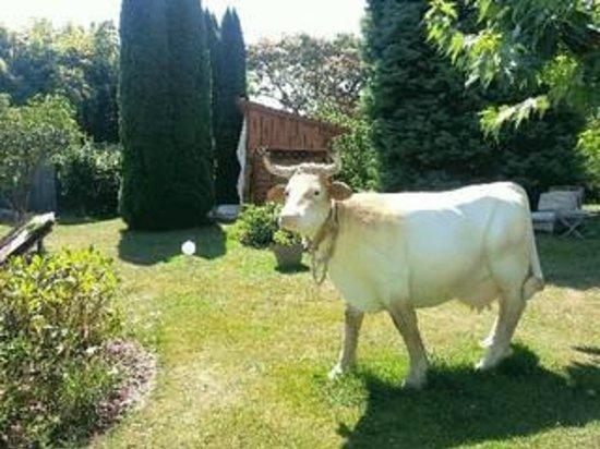 Hostellerie Saint-Jacques: ho la vache  !!!!