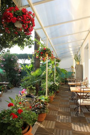 Hotel Victorine : la terrasse