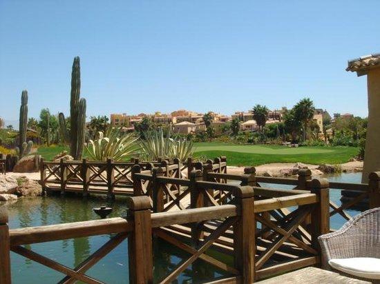 The Desert Springs Resort: The 18th green