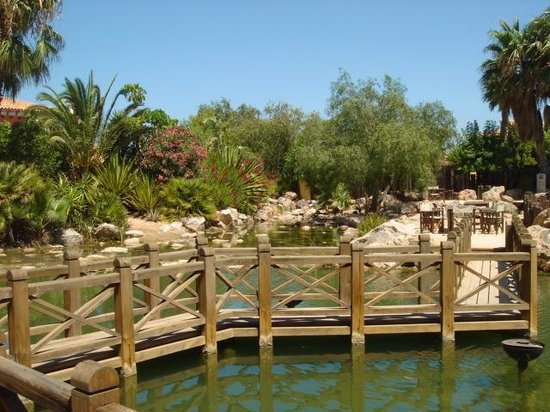The Desert Springs Resort: the clubhouse patio
