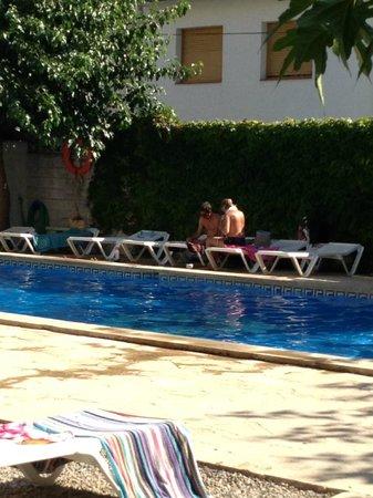 Hotel Windsor: piscina