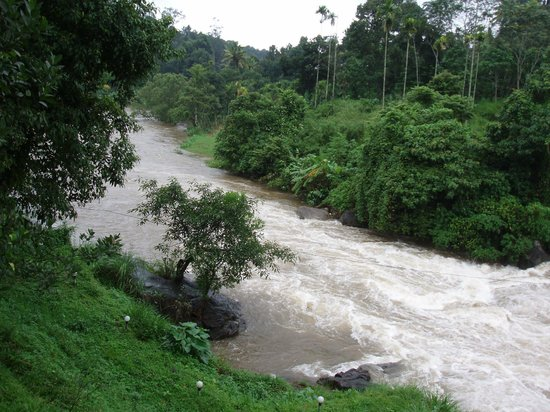 Ripples N Rocks Homestay: The mighty Muthirapuzzha river