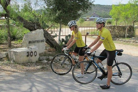 Montesino Ranch Studios : Bike ride for miles on traffic free routes