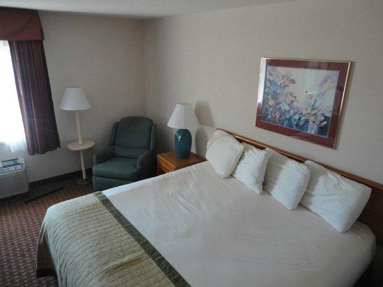 Baymont Inn & Suites ST. Joseph/Stevensville : King size bed/Dirty Chair