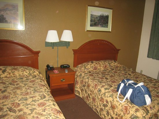 Econo Lodge at the Falls North: Inside the Room