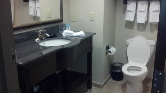 Hampton Inn & Suites Mansfield: Brand New & Spotless