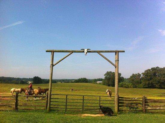 Seventy-four Ranch: Manuel