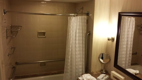 Renaissance Baltimore Harborplace Hotel: Tub and shower
