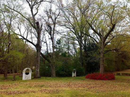 Natchez, MS: Melrose - w ogrodzie