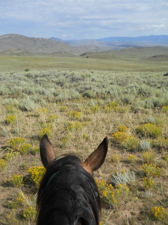 Rusty Spurr Ranch: Views from the Rusty Spurr