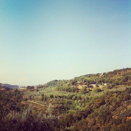 Alta Perugia B&B : La vista dalla camera