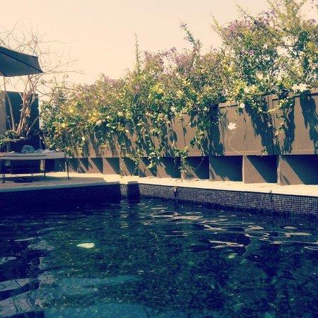 Flor de Mayo Hotel and Restaurant : La piscina en la terraza