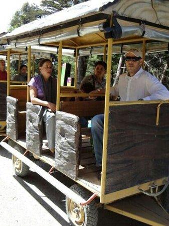 Tour of Medellin