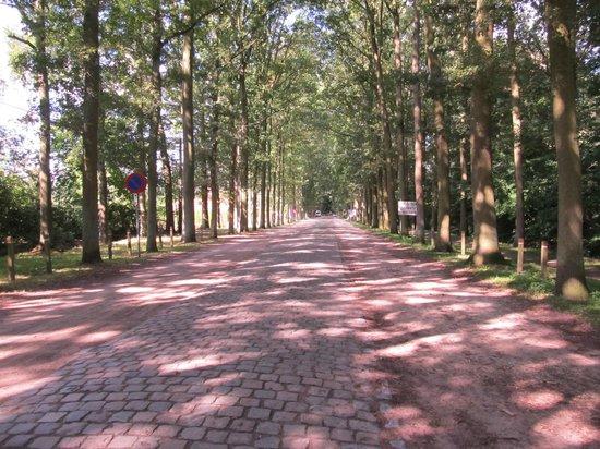 Jebola Bed & Breakfast: beautiful nearby walks & cycling
