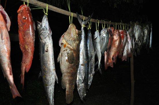 Villa Mahilaka: petite pêche
