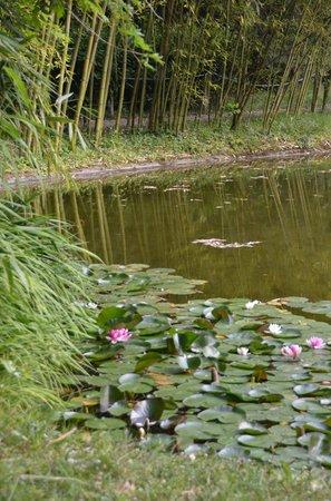 Parque Natural Señorío de Bertiz: Parque Natural Senorio de Bertiz