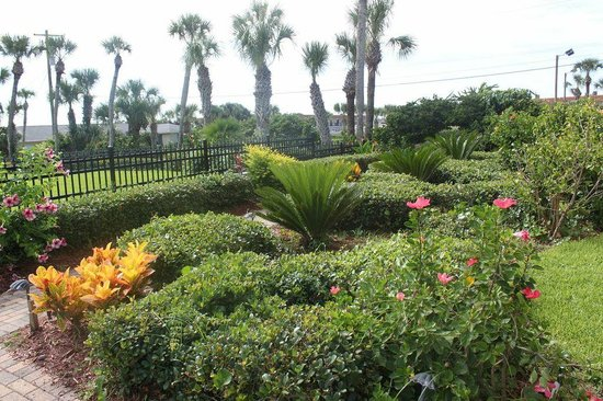 La Fiesta Ocean Inn & Suites: Garden area