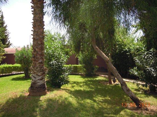 Dar Ilham: jardin
