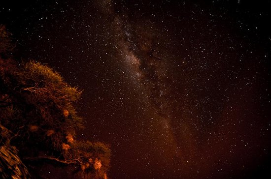 Tawi Lodge: Milkway from our room