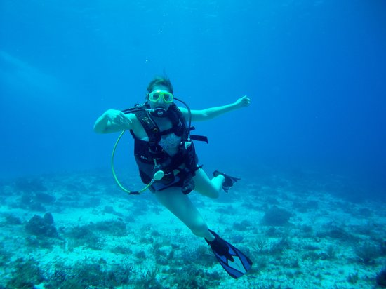 NIrvana Diving School : The visibility was amazing.