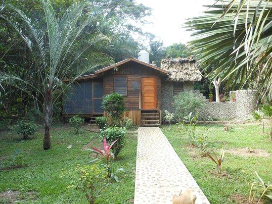 Macaw Bank Jungle Lodge: Exterior of Cotton Tree Cabana
