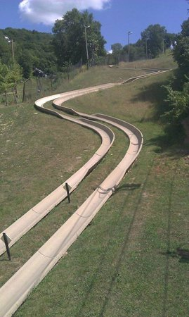 Chestnut Mountain Resort : Alpine Slide