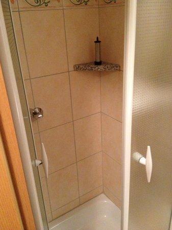 Hotel Gremersdorf - Zum Gruenen Jaeger: Shower