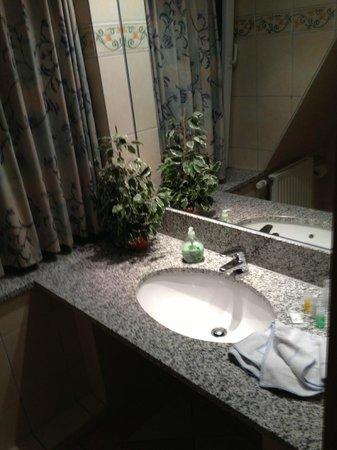 Hotel Gremersdorf - Zum Gruenen Jaeger: Bathroom