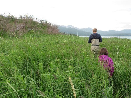 Katmai Wilderness Lodge: bear walk