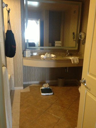 Madison Hotel: Bathroom Sink area with hair dryer hanging in black bag