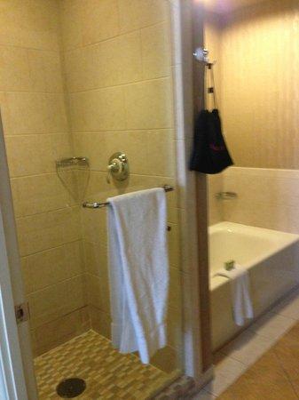 Madison Hotel: Separate Shower & Tub