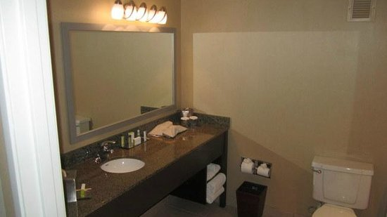 Doubletree Hotel San Diego Downtown : King suite, standard sink, no towel hooks