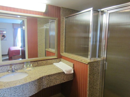 Holiday Inn Hotel & Suites Rochester - Marketplace: Bathroom