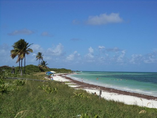 Bahia Honda State Park And Beach Sandspur On In The Florida