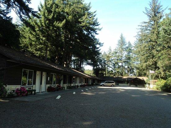 Park Motel : Classic charming 50's motel